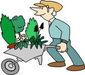 Thông Làm Vườn