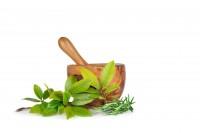 TN America Herbs